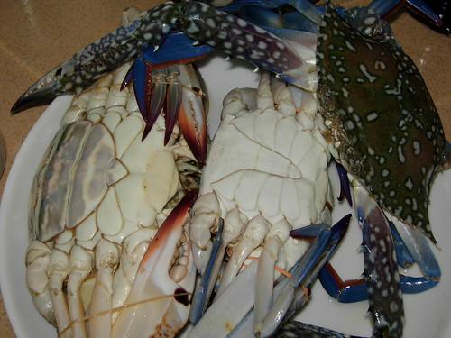 flower crabs