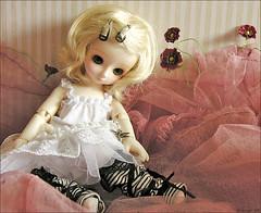 My baby has arrived !! (MiriamBJDolls) Tags: flower doll bjd superdollfie volks limitededition carlota yosd musedoll hinaichigo dollsparty18