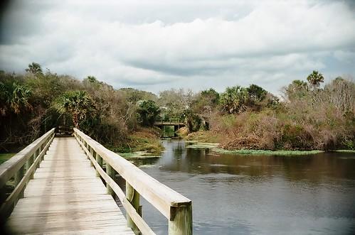 Creek Walkway