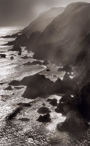 Monochrome Shore