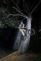 Bryan Babbel Tree Ride To X-Up (brandonmeans) Tags: california tree love college ice pool up bike wall turn bench campus photography bmx san ride d70 seat brandon gap bikes diego stall down mikey smith x 180 southern bryan tranny biking pick transfer temecula grind means wallride ucsd sprocket xup ledges drained grinds babbel turndown murrietta