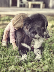 Pure Love (Ggja Einars..) Tags: family summer urban dog baby cute love nature girl kids canon vintage hugging toddler kentucky gorgeous doggy krakkar nttra embla icelandic ggja