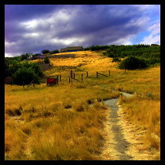 Running Up that Hill (ecstaticist) Tags: light cloud grass bush kate path hill alberta prairie headsmashedinbuffalojump naturesfinest platinumphoto
