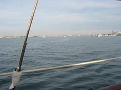 IMG_1968 (JFSD (Jonnie)) Tags: sandiego whalewatching sandiegobay jada