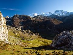 Vega la Bricial (jtsoft) Tags: mountains landscape asturias olympus picosdeeuropa e510 cangasdeons lagosdecovadonga peasanta zd1454mm torresantamara jtsoftorg