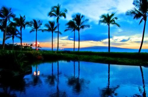 Blue Hawaii by janruss.