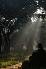 I will Love Light ... (Rajesh') Tags: morning light lightandshadows waiting peace shadows cubbonpark crepuscularrays rajesh smcpentaxda1855mmf3556al pentaxk100dsuper