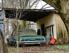 1964 Chevrolet Biscayne (cindy47452) Tags: old green chevrolet abandoned car shed indiana chevy creativecommons 100views 400views 300views 200views parked orangecounty 1964 biscayne