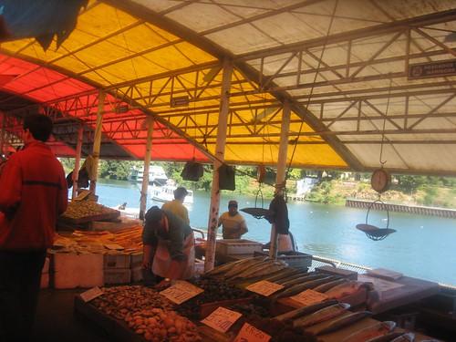 Ferial fluvial Valdivia