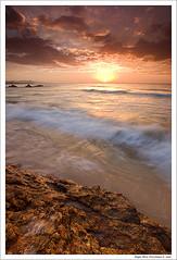 Gold Rush (Kah Kit Yoong) Tags: australia victoria themoulinrouge croajingolong aplusphoto megashot auselite platinumheartaward great123