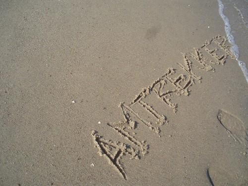 Beach Trekker