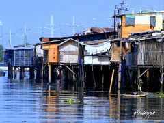 house over water (innow) Tags: poverty compound philippines manila parola tondo kahirapan teampilipinas