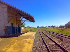 O trem corre por cima da linha (mendesrocha) Tags: bicicleta anpolis domingo passeio gois nokian73
