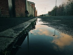 (Ella Rowella) Tags: uk gb colour backlane northernengland sunderland huaweip9 vscocam