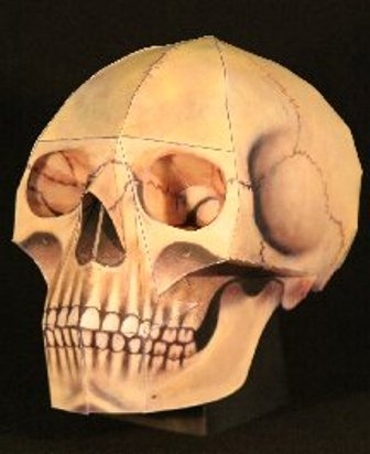3D skull paper craft pattern tutorial