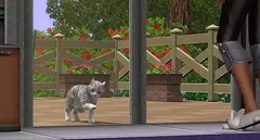 Sims 3 Pets 14