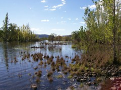 Swampy plains river (hollis_corey) Tags: water river nsw trout snowymountains troutfishing khancoban swampyplainsriver