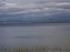 a plane landing at SFO