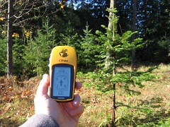 Geocaching (photo by Anna Creech)