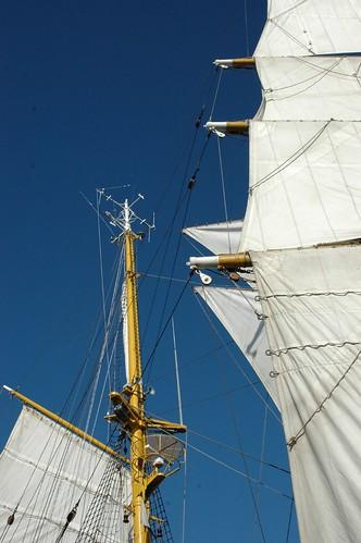 2007.11.15 veleiro salva 096