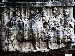 fori (156) (blum1) Tags: foriimperiali colosseo fororomano circomassimo caracalla arcodisettimiosevero romaifori