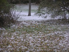 first snow of this winter season