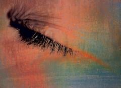 Then I Close My Eyes ... (Sara Bjrk) Tags: photofaceoffwinner pfogold
