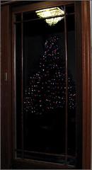 Christmas tree reflection...