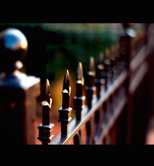 scene from a movie (Lani Barbitta) Tags: nikon explore 18 lani ironfence 50mm18 wideopen d40 nikond40 anawesomeshot excellentphotographerawards theperfectphotographer miscellaneousworkphotos lanibarbitta barbitta