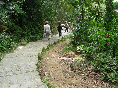 On the way Fei Feng Mountain hiking trail