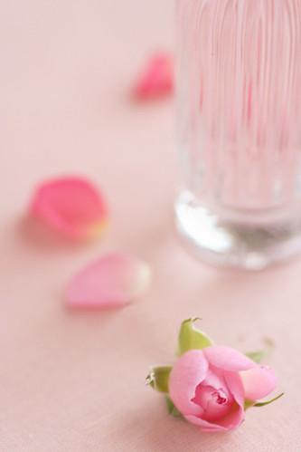 fragrance #2