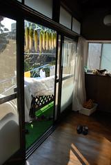 Drying daikons (Smaku) Tags: door food japan floor dry daikon radish hang hardwood