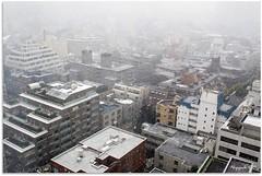 Snowing in Tokyo (nippak) Tags: city white snow nature weather japan season tokyo nikon d300 2470mm