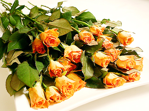 Rose Petal Tart-080131