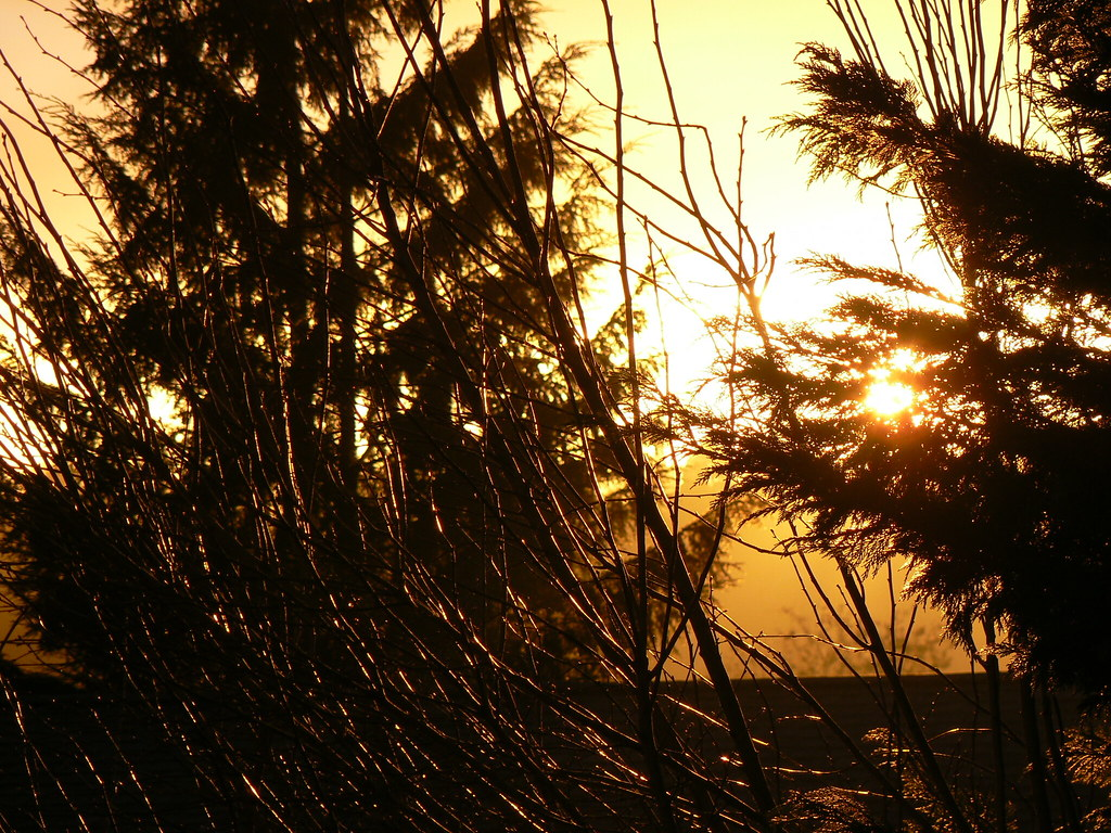 2008-02-12 Sunset 002