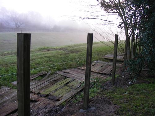 Back_Yard_Fence000.JPG
