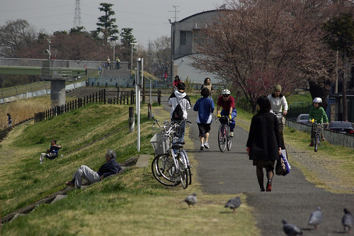 Tamagawa River Cycling road