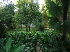 Orto Botanico Padova (wympy's photos) Tags: giardini padova ortobotanico ortobotanicopadova