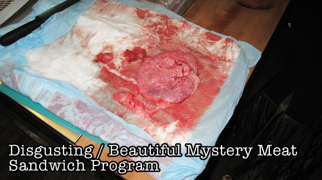 Disgusting / Beautiful Mystery Meat Sandwich Program