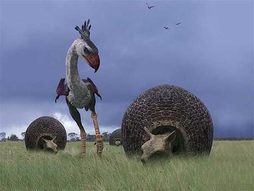 Phorusrhacos vs Doedicurus