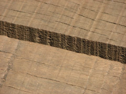Patterns in Wood Bhadra 031107