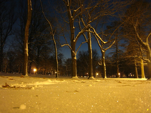 Walking through snowy Tower Grove Park in St. Louis, MO at night
