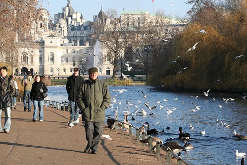 London - The Birds of Hyde Park