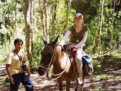 Mula - my third horse ever (digitalia) Tags: vanessa horse me trekking trek per hi coca mule ola amazonas horseriding mula bula granvilaya huayllabelen