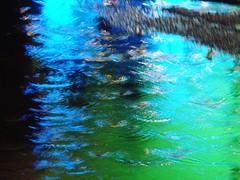 "Rain (Rodrigo Soldon 2) Tags: blue color verde green water colors rain água azul night cores de geotagged photography noche photo lluvia agua eau wasser colore foto nightshot nacht couleurs chuva pluie colores noturna fotos nightlight noite fotografia scape acqua farbe colori pioggia nuit cor notte regen vesi nox farben 水 noturnas waterscape auga kleur ночь 비 色 leau regna вода 雨 цветы дождь цвет akvo βροχή färga photography"" 색깔 근해 χρώμα ύδωρ χρώματα لون ""stock couleur顏色 ""banco imagens"""