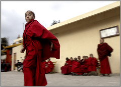 a little monk among many others (Sukanto Debnath) Tags: red portrait india little sony monk f828 sikkim nepali sikkimese debnath budhhist budhhism mywinners abigfave westsikkim sukanto sukantodebnath rinchengpong