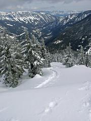 Looking back at summit tracks and Nason Ridge.