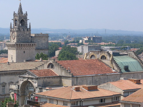 The Avignon city view