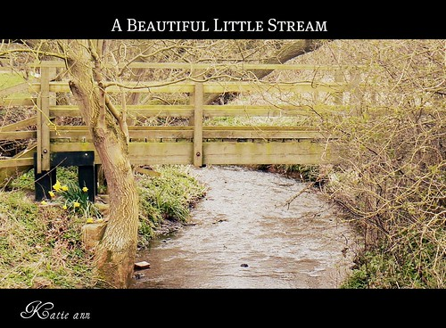 A lovely little stream