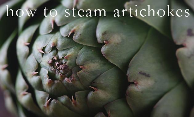 artichokes-tx